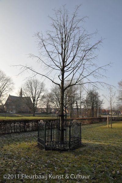 Koningin Beatrix boom